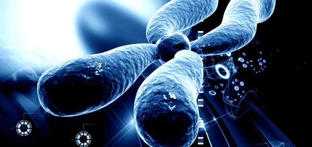 Тест за Синдром на чупливата Х хромозома