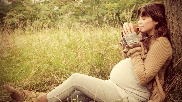 Проследяване на бременността след ин витро оплождане
